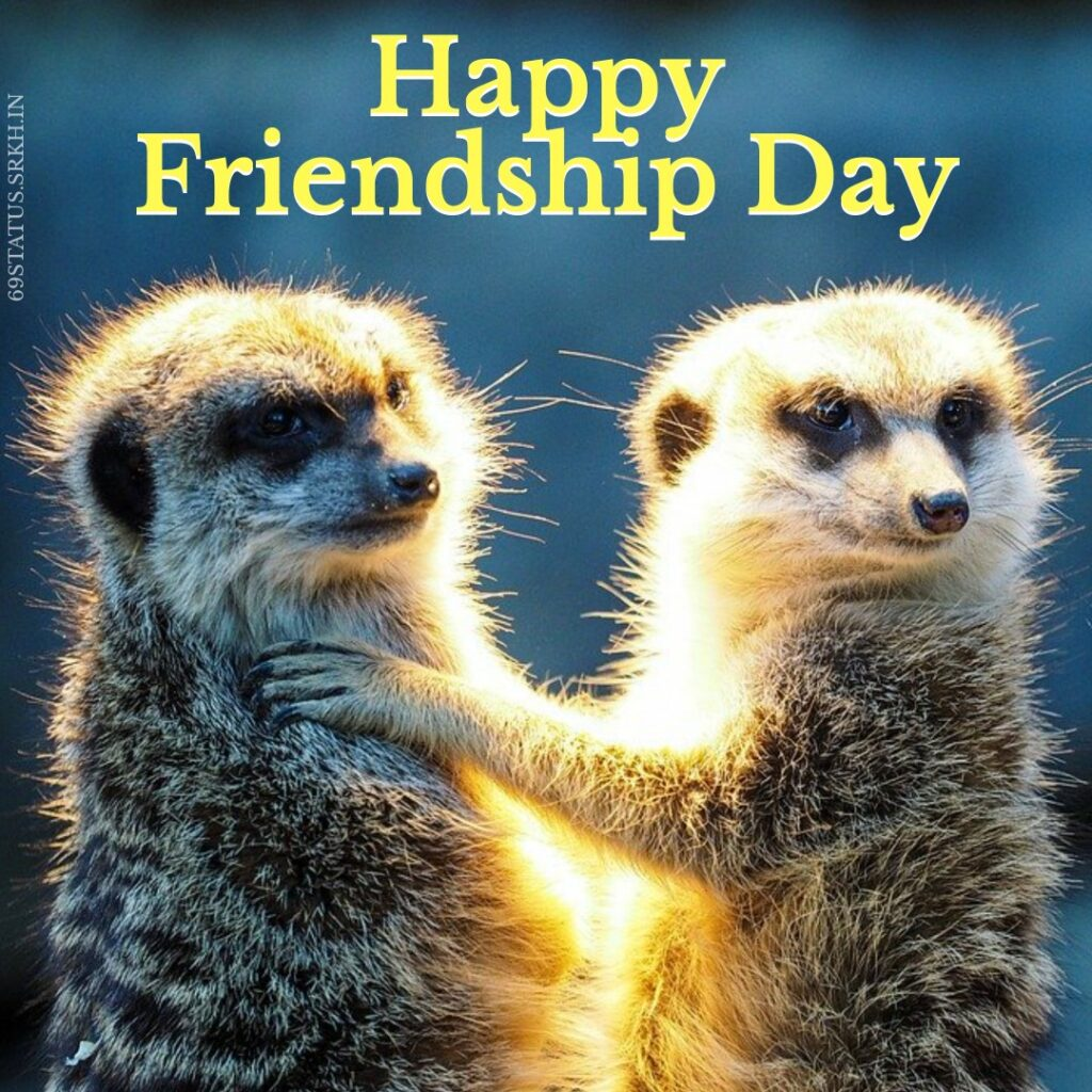Happy-Friendship-Funny-Images-Download